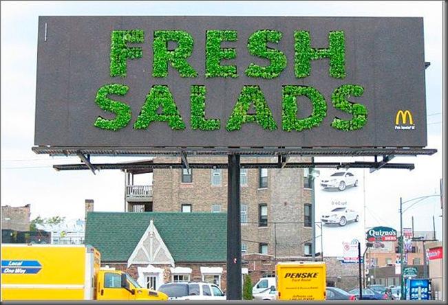 mcdonalds_salad