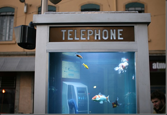 aquarium_phone_booth02