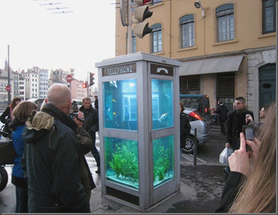 aquarium_phone_booth03
