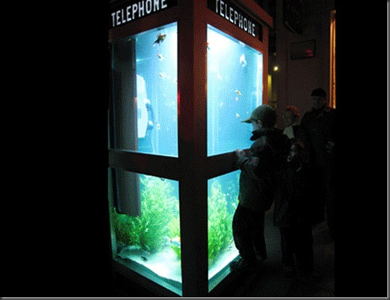 aquarium_phone_booth04