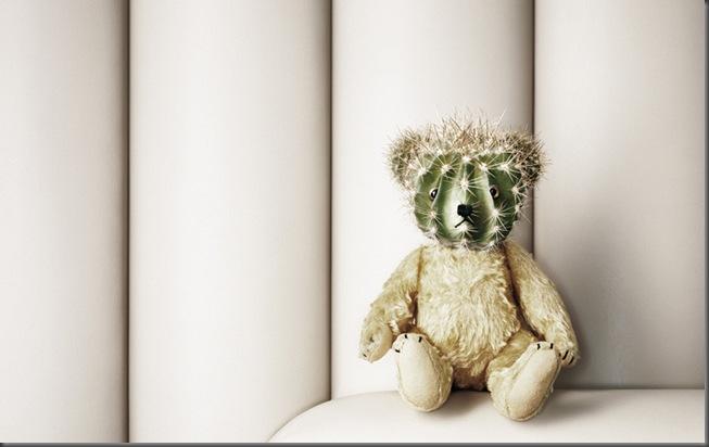 debra_teddybaer