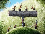 ant stories by Andrey Pavlov